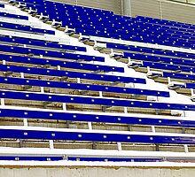 Toronto Varsity Stadium by Valentino Visentini