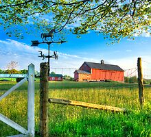 Summer Evening on the Farm by Bruce Taylor