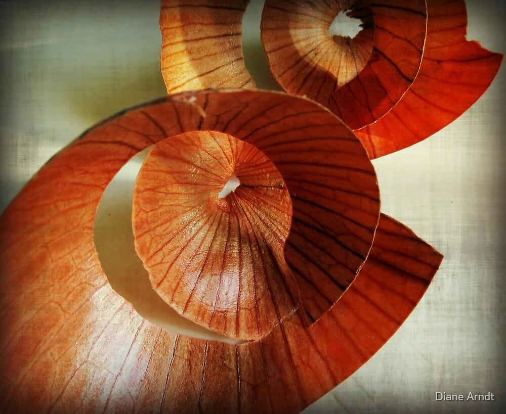 Apple Peel????...No...Onion Skins!!!! by Diane Arndt