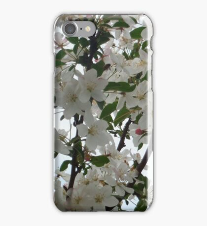 Crab Apple Blossoms iPhone Case/Skin