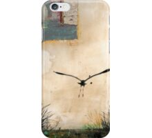 Pelican Into The Sun iPhone Case/Skin