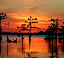 Sunset on the Bayou by Carey Chen
