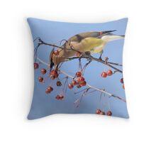 Cedar Waxwing Eating Berries 8 Throw Pillow