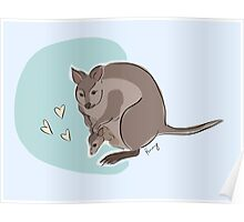 Pademelon and Joey Poster