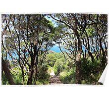 Cape Schanck Australia Poster