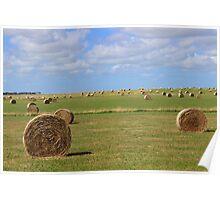 Australia Landscape Hay Field Poster