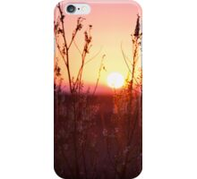 Grass Silhouette with a beautiful sunset iPhone Case/Skin