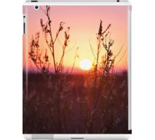 Grass Silhouette with a beautiful sunset iPad Case/Skin