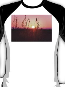 Grass Silhouette with a beautiful sunset T-Shirt