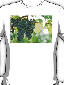 Ripe red wine grapes  T-Shirt