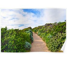 Beach Path Landscape Poster