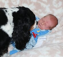 Grandson - David James Timothy & Charlie Girl  by AnnDixon
