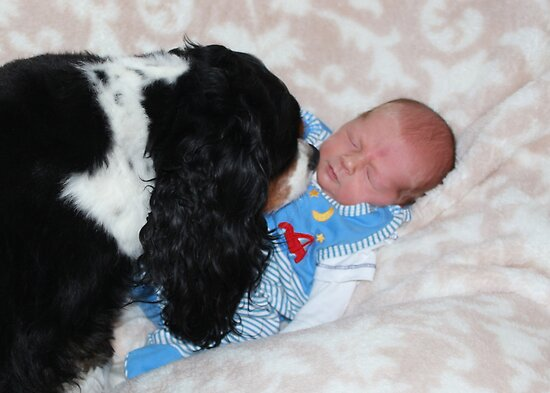 Grandson - David James Timothy & Charlie Girl  by AnnDixon