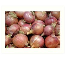Onions with roots Art Print