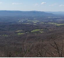 Shenandoah Valley by John Ayo