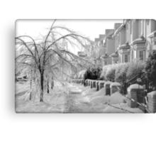 Frozen Suburbia Metal Print