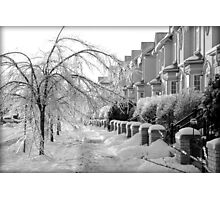 Frozen Suburbia Photographic Print