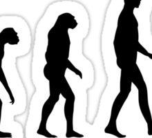 Evolution Surf Sticker