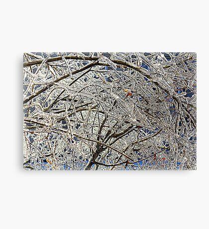 Winter Freezing Canvas Print