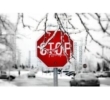 Iced Stop Photographic Print