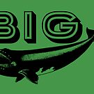 BIG WHALE by Vana Shipton