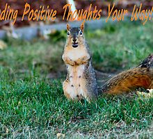 Happy Squirrels Positive Thoughts by Keala