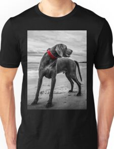 Wandering Beach Dog T-Shirt