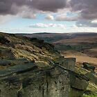 Buckstone edge /4 by chris2766