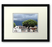Under a cloudy sky Framed Print