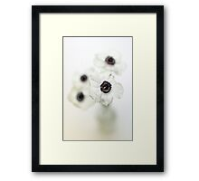 White Anemones in a vase Framed Print