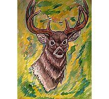 Watercolor Deer Photographic Print