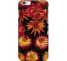 Bright orange and yellow Dahlias iPhone Case/Skin