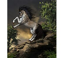 The Rearing Horse Photographic Print