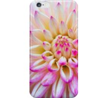 White Dahlia with Lavender Tips iPhone Case/Skin