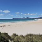 Beach at Shelly Point, Tasmania by Margaret  Hyde