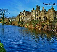 Cerdyn Penblwydd Mynachlog Nedd by Paula J James
