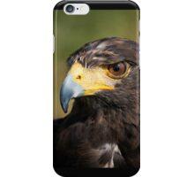 hawk iPhone Case/Skin