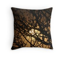 Trees in the Light  Throw Pillow