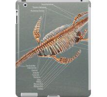 Elasmosaurus Skeleton Study iPad Case/Skin