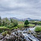 Flowing Through Sneem by Mary Carol Story