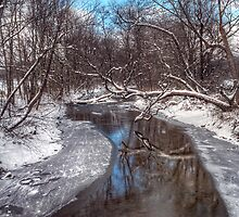 Mid Winter Reflections by James Hoffman