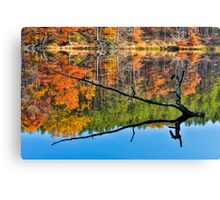 Branch Protrudes from Autumn Lake Canvas Print