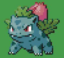 2 - Ivysaur by ColonelNicky