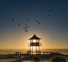 Fly Past by Neville  Prosser