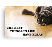 The Best Things In Life Have Fleas Canvas Print