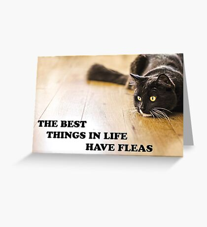 The Best Things In Life Have Fleas Greeting Card