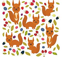 pattern with red squirrel Photographic Print