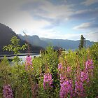 Thirlmere Lake District Cumbria UK by liberthine01