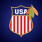 Blackhawks Team USA Poster by fohkat