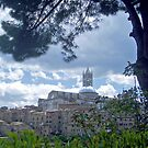 View on Siena by Arie Koene